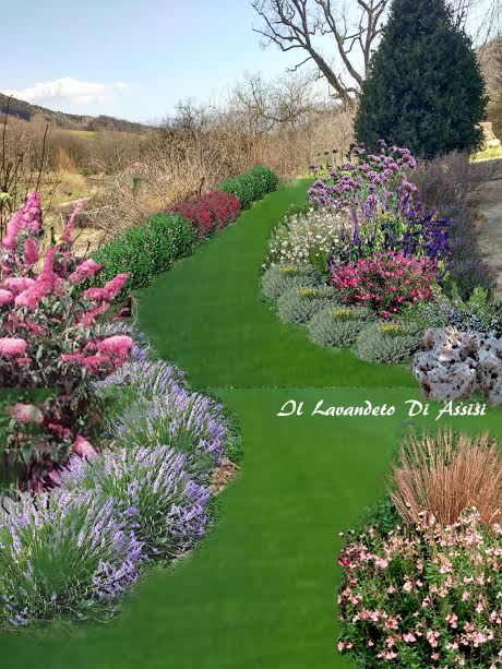 Progetti piccoli giardini e aiuole online for Giardini e aiuole