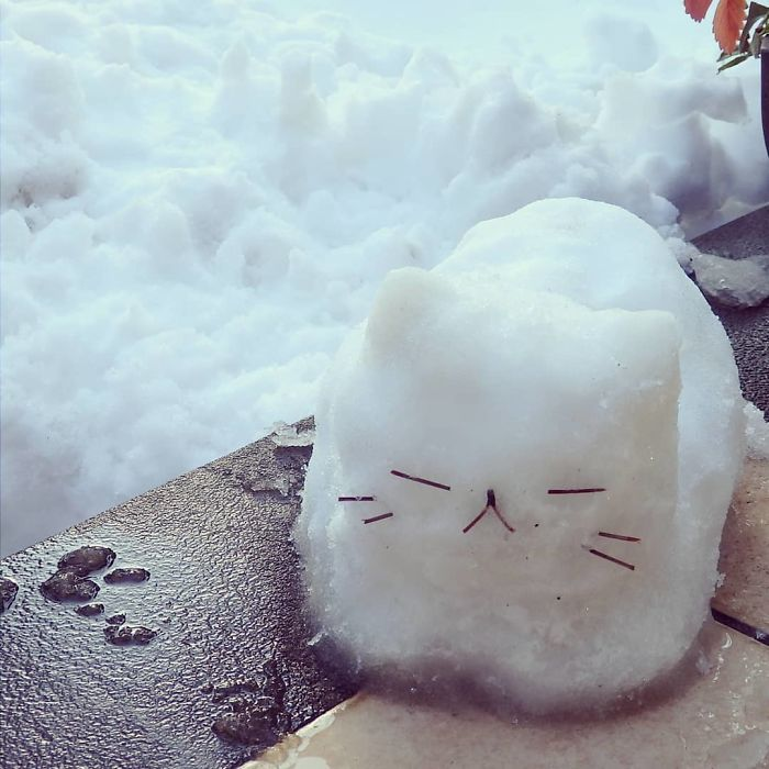Mesmerizing Pictures Show How Heavy Snowfall In Japan Made People Creative
