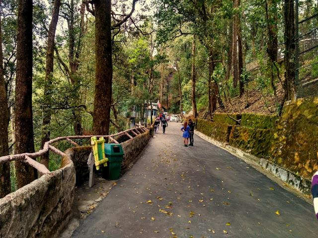 Padmaja Himalayan Zoological Park