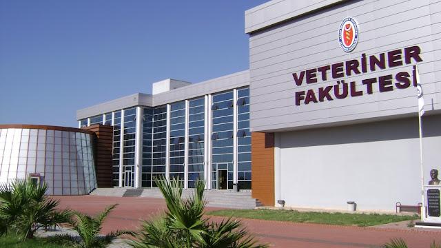 جامعة عدنان مندريس Adnan Menderes Üniversitesi التركية
