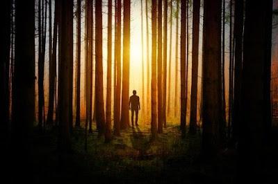 https://www.kangkaret.com/2019/12/perbedaan-menyadap-pohon-karet-saat.html