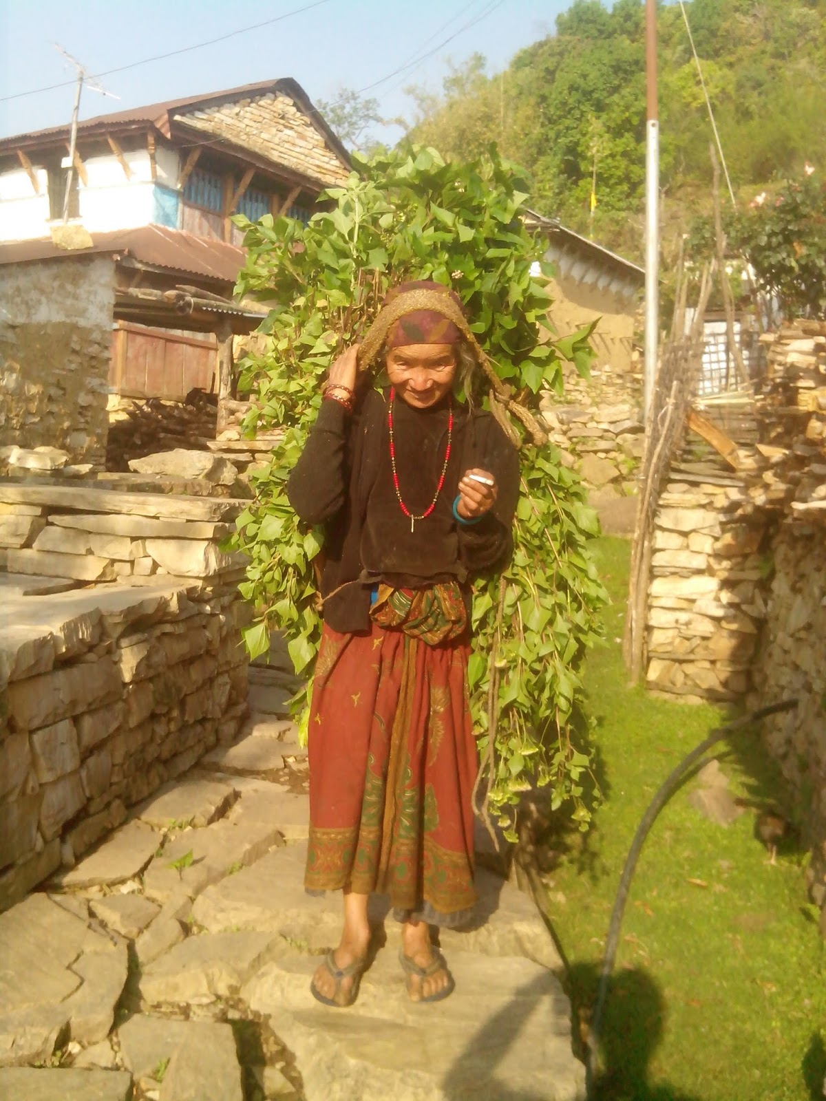 Nepal Tour Packages, Holidays And Trekking