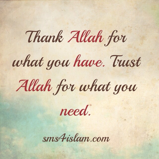 Thank Allah for what you have - Quote