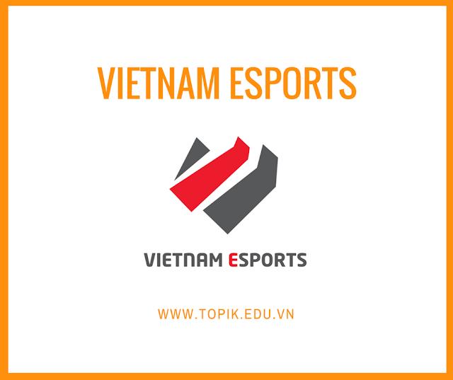 [HCM] VIETNAM ESPORTS TUYỂN  PHIÊN DỊCH TIẾNG HÀN CHO GAMES
