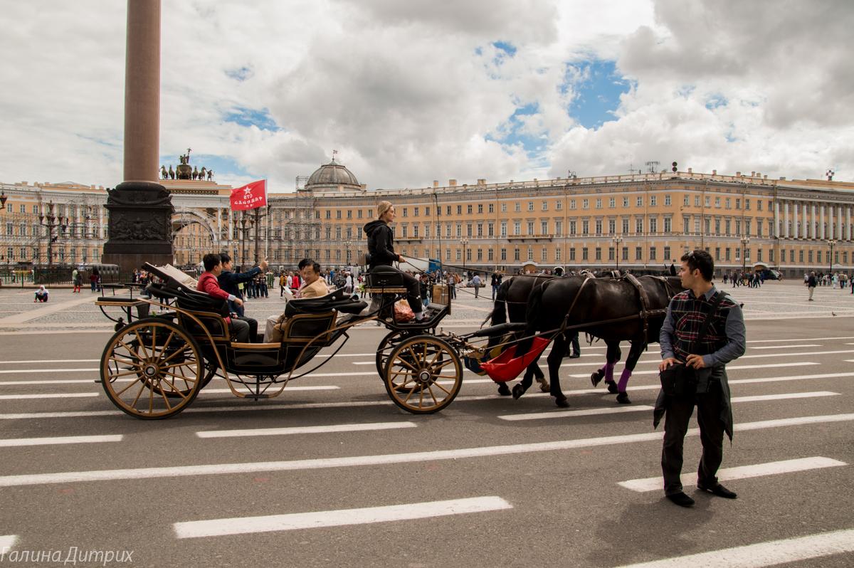 Карета на Дворцовой площади фото