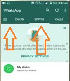posisi kontak whatsapp terbaru
