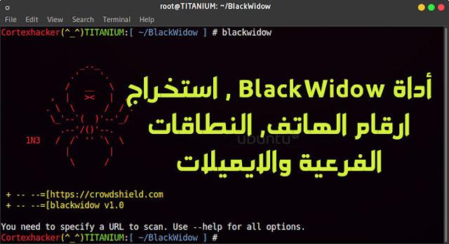 أداة BlackWidow , استخراج ارقام الهاتف, النطاقات الفرعية والايميلات