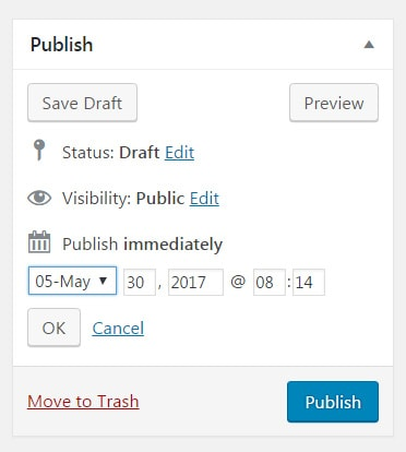 Publishing Options in WordPress