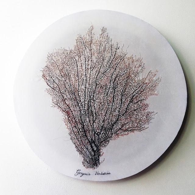 art textile contemporain, précis de botanique