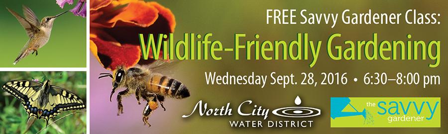 Shoreline Area News Register Now For Free Wildlife