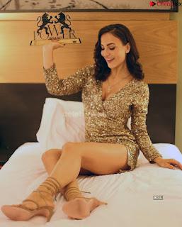 Elli Avram   Girlfriend of hardik Pandya  Elli Avrram in Bikini ~ .xyz Exclusive 011.jpg