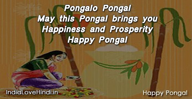 pongal wishes, pongal quotes, pongal sms, pongal messages, pongal images, pongal photos, happy pongal wishes, pongal status, pongal greeting card, pongal quotes in english, pongal quotes in tamil, pongal quotes in telugu, thai pongal, muttu pongal