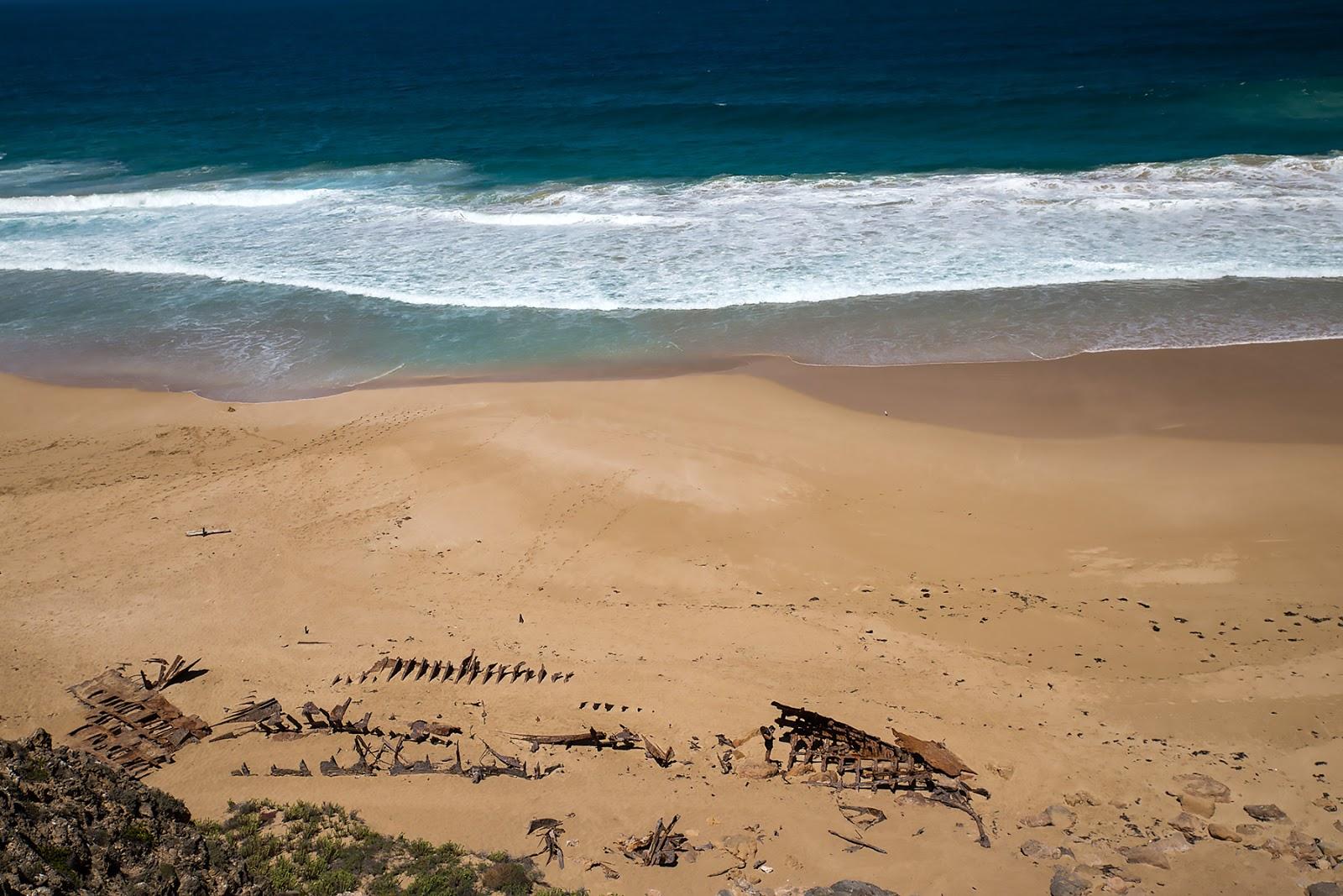 plaża,ocean,szkielet wraku,wybrzeże
