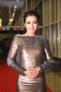 Actress Catherine Tresa in Golden Skin Tight Backless Gown at Gautam Nanda music launchi ~ Exclusive Celebrities Galleries 075.JPG