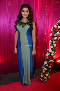 Anupama Parameswaran in lovely shaded gown ~  Exclusive 04.JPG