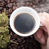 Why Coffee Could Be the Opposite of Cannabis