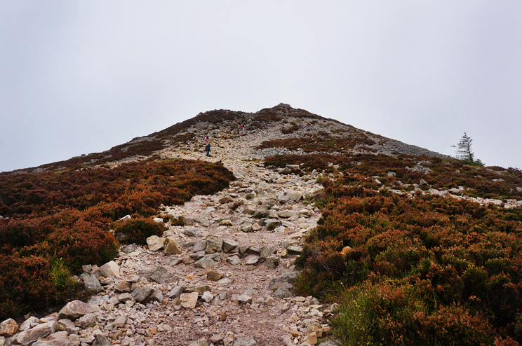 A rocky trail to the top