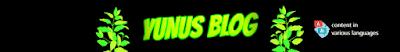 Yunus Blog