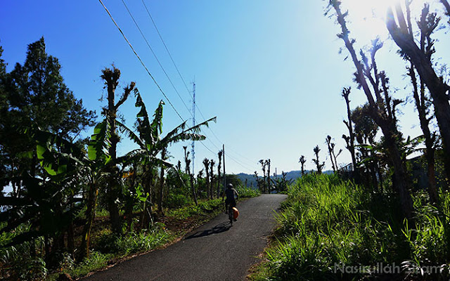 Ruas jalan menuju Watu Lawang Mangunan
