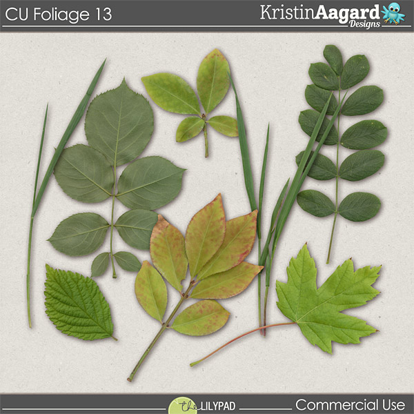 http://the-lilypad.com/store/Digital-Scrapbook-Design-Tools-CU-Foliage-13.html