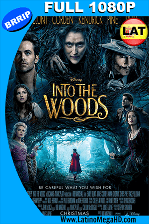 En el Bosque (2014) Latino Full HD 1080P ()