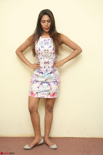 Nishi Ganda stunning cute in Flower Print short dress at Tick Tack Movie Press Meet March 2017 050.JPG