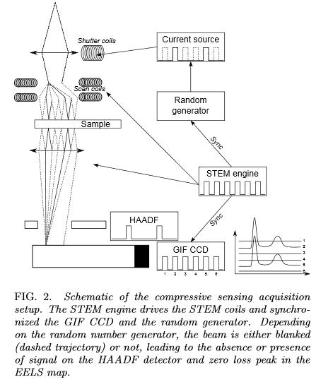 Electron microscopy thesis