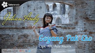 Lirik Lagu Goyang Pak Eko - Jihan Audy