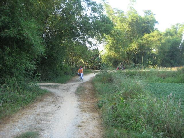 Hình ảnh làng quê Thủy Triều, Phổ Văn, Đức Phổ 13
