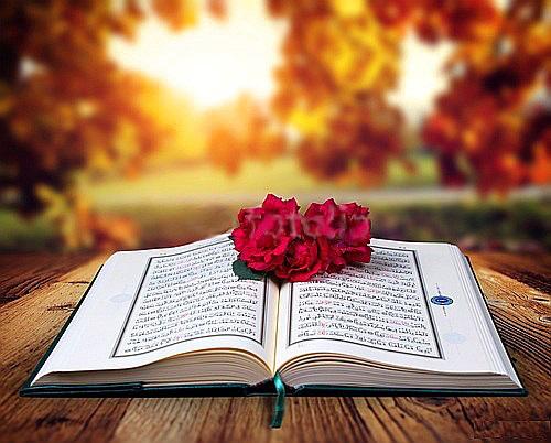 Gambar Quran 457 Wallpaper Bunga