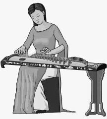 dan tranh : Vietnamese musical instrument