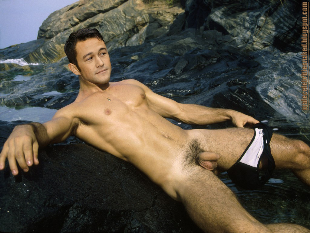 Malecelebritiesnaked Joseph Gordon Levitt Free Download Nude Photo Gallery