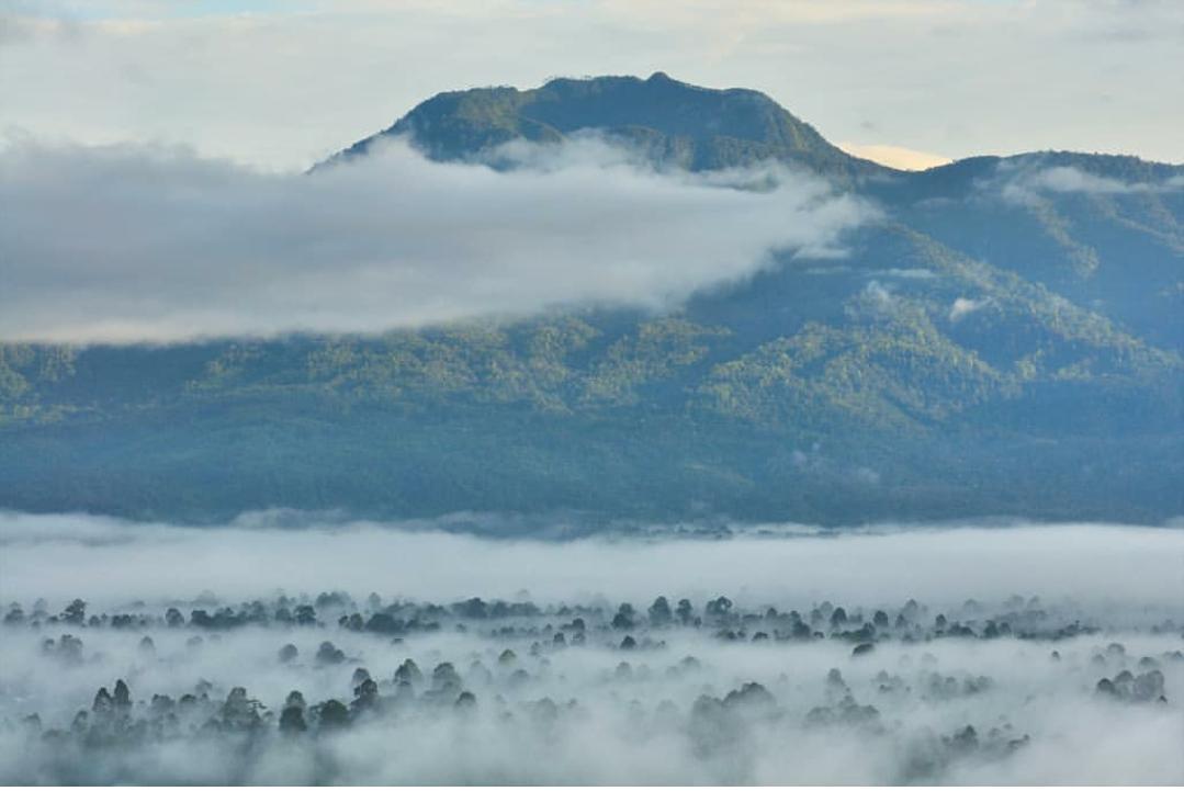 Hasil gambar untuk gambar gunung pesagi