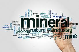 mineral-www.healthnote25.com