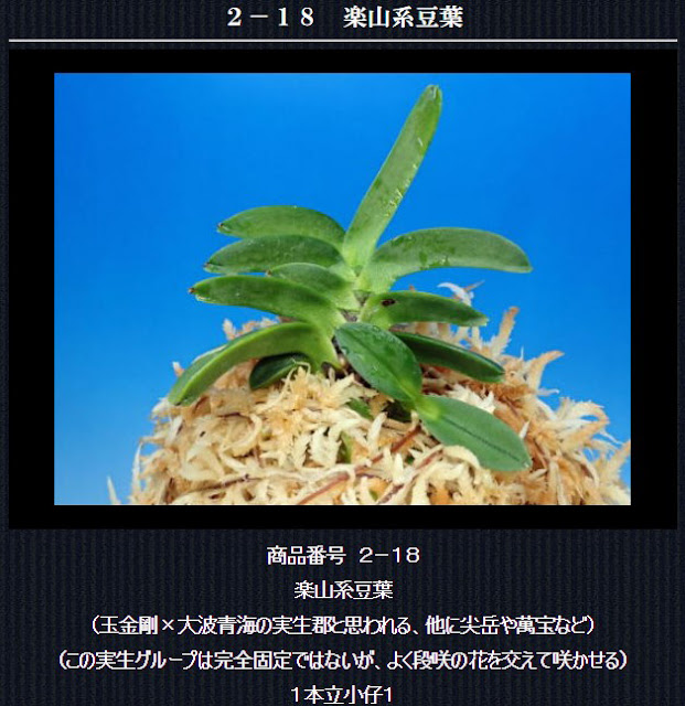 http://www.fuuran.jp/2-18.html
