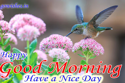 16-12-2018 Good Morning wishes image Today