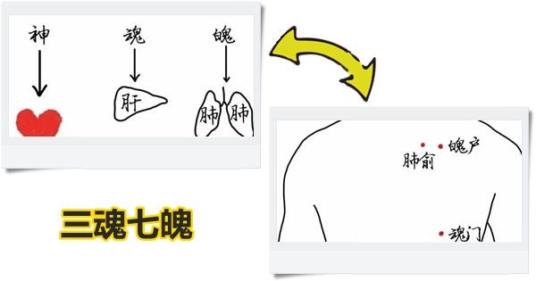 """中醫講""""三魂七魄"""",數數你的都還在嗎?(養心、養魂、養魄)"""
