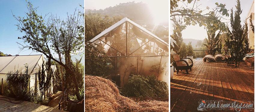 The Barn Home Farm: Homestay xanh mướt, CẢ TỶ góc sống ảo ở Đà Lạt