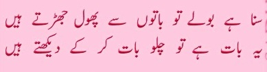 Ahmad Faraz Poetry Suna Hai Log | Urdu Poetry