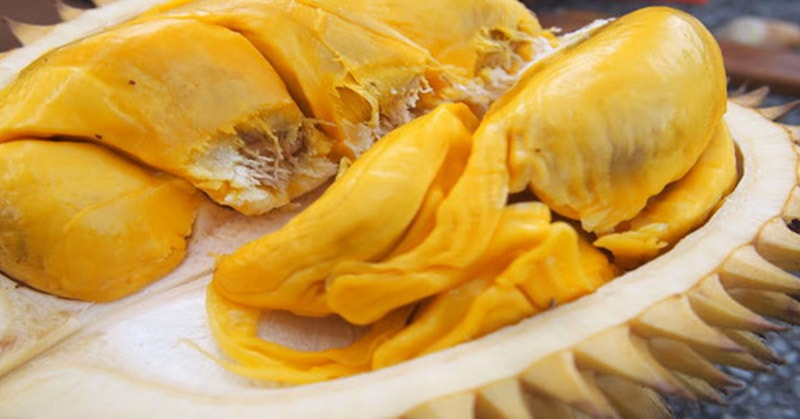 Cara Memilih Durian yang Manis Berkualitas