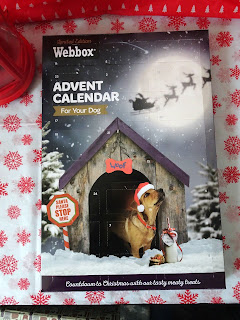 dog advent calender