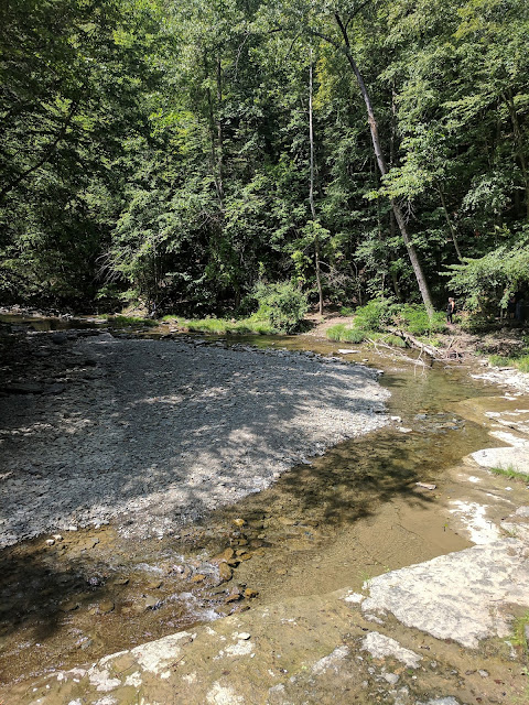 Last Trip of The Summer:  Robert H Treman State Park --Part One --How Did I Get Here? My Amazing Genealogy Journey