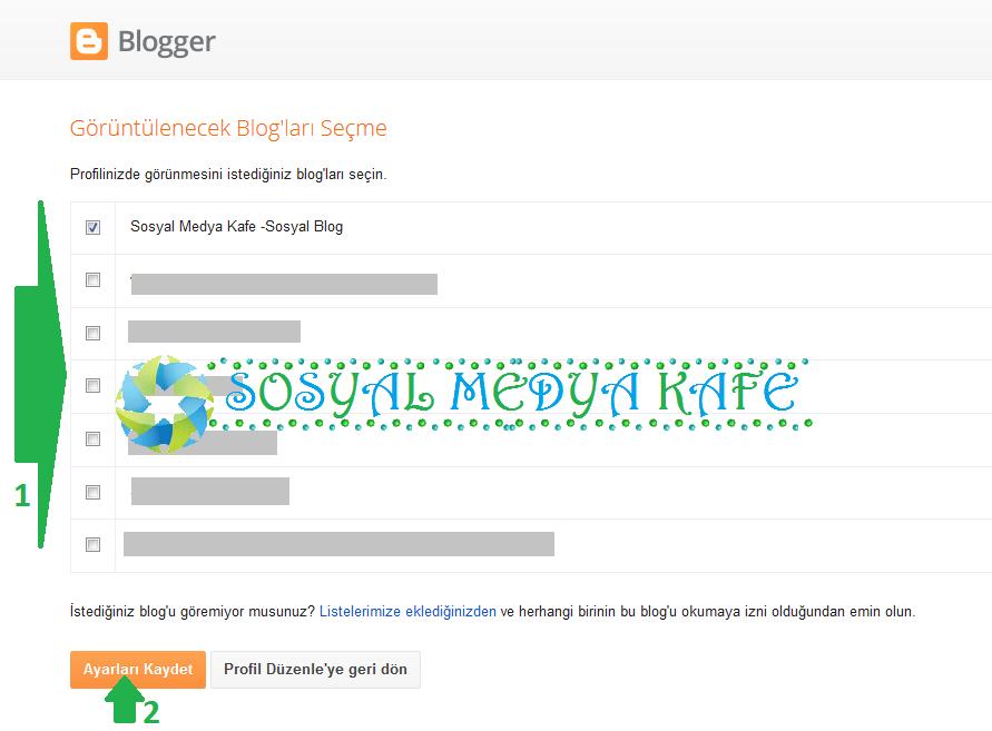 blogger profilinde görünecek blogları seçmek