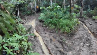 Jalan menuju Trial Dozer Caterpillar D5R Land Clearing di Proyek Cetak Sawah Ampah Kalimantan Tengah