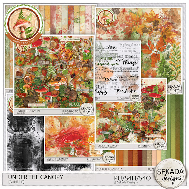 https://www.digitalscrapbookingstudio.com/sekada-designs/?category_id=4670