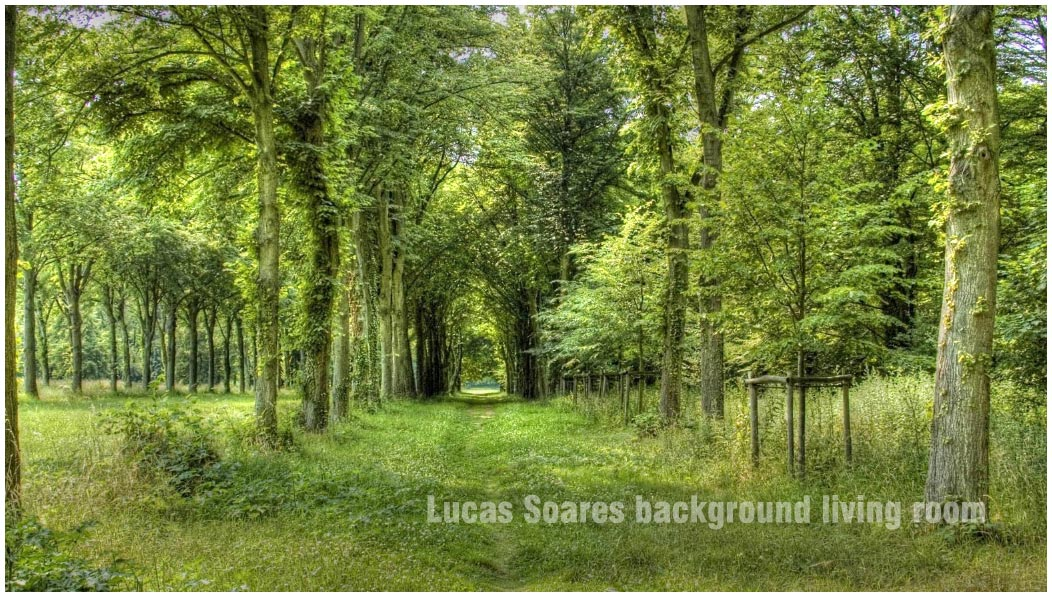 Vray Proxy Trees Free Download - lostspeed