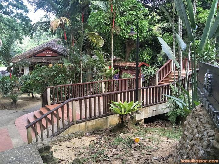 Penginapan Taman Negara Pahang