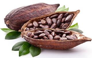 kakaonun yararları