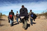 Resultat d'imatges de migracions