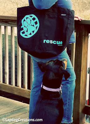 Penny & I will be traveling in style with our RESCUE tote bag from #PawZaar - Global Style for Pet Lovers! #rescueddogs #adoptdontshop #animalwelfare #rescue #LapdogCreations ©Lapdog Creations